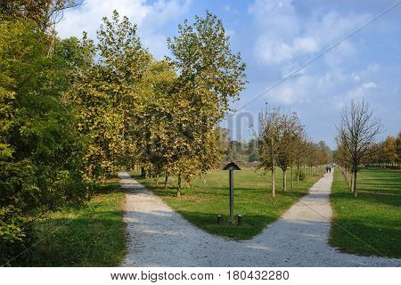 Monza (Brianza Lombardy Italy): the park at fall (october) two paths