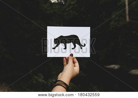 Human hand holding wild life leopard perforated paper craft in nature