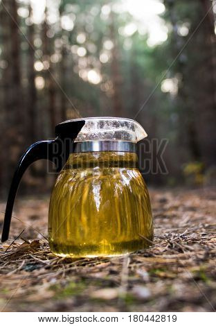 Kettle with tea on a picnic in forest