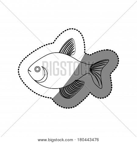 sticker silhouette fish aquatic animal icon vector illustration