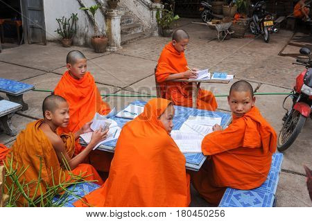 Young Monks Studying At Wat Xieng Thong Temple