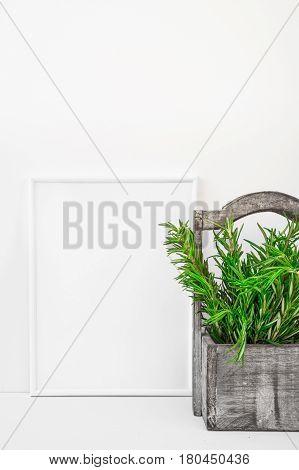 Frame mockup on white background fresh green rosemary in vintage wood box Provence style styled image for blogging social media branding