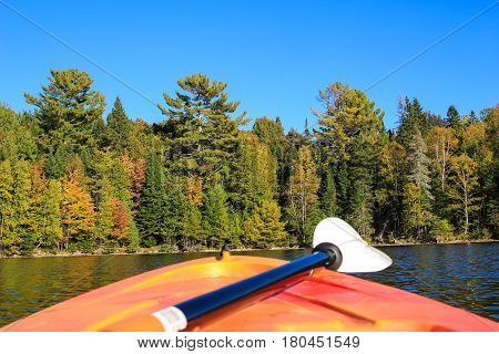 Kayaking In Early Fall In Canada