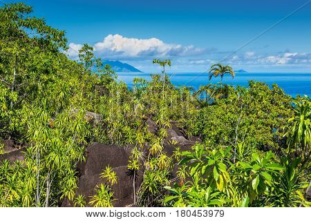 View from Anse Major Nature Trail over the northwest coastline of Mahe island and granite rock covered with wild vegetation in the foreground Seychelles