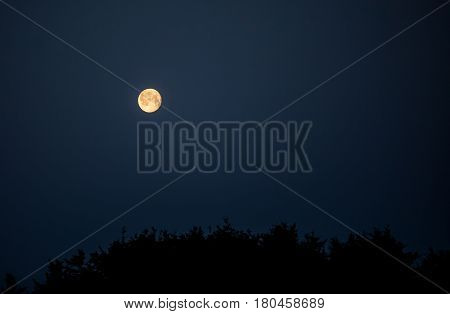 Full moon in the winter in Prince Edward Island