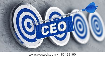 Chief Executive Officer (CEO) concept with a banner on an arrow penetrating the center bulls eye on a target. 3d Rendering.