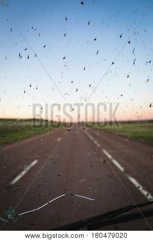 Dead bugs splattered on a broken windshield with a highway in the background.