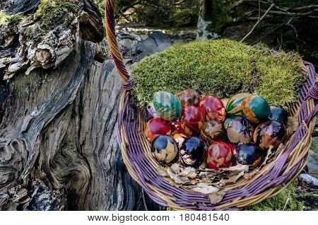 Picture of Easter basket filled with colorful eggs stock photo, images and stock photography.