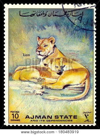 STAVROPOL RUSSIA - April 05 2017: A stamp printed in Ajman shows Panthera Leo (Panther lion) circa 1995