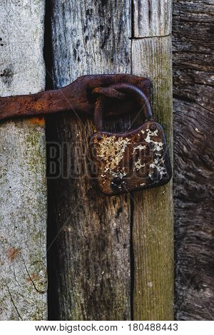 Locked old wooden door with cracks and rusty lock close-up view