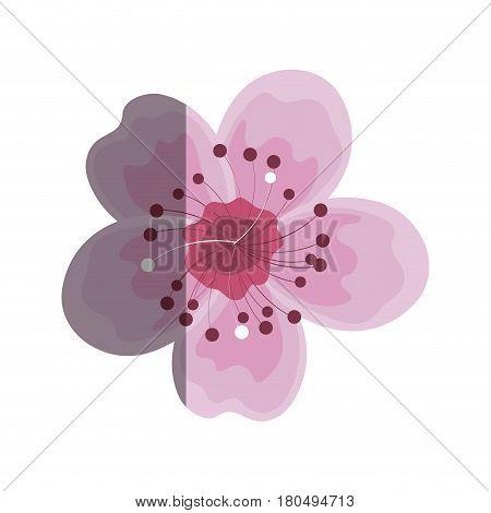 japanese cute flower icon vector illustration design