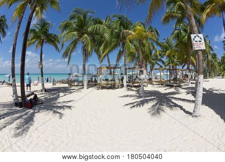 ISLA MUJERES QUINTANA ROO MEXICO - MARCH 1 2017: Shallow turquoise waters and lush green coconut palms make Playa Norte on the Caribbean island of Isla Mujeres a popular vacation destination.
