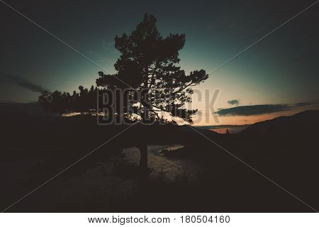 Dramatic wide angle view of pine tree silhouette near Katun mountain river on late sunset with mountains and hills in background and dark scenery teal summer sky Altai Russia