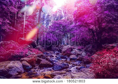 Natural background waterfall. waterfall Colorful leaves. thailand tropical