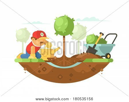 Gardener man planting tree and watering young seedling. Vector illustration