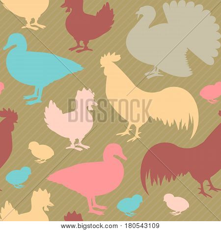Colorful seamless pattern with farm birds silhouettes including rooster goose and turkey