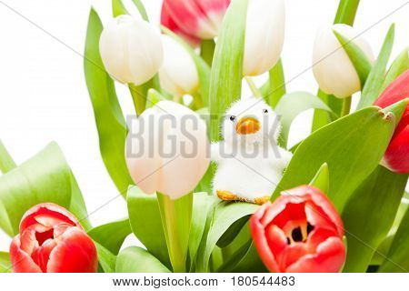 Studio shot of bouquet of tulips with easter ornament