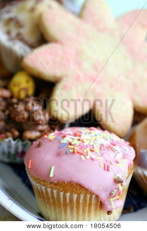 A plateful of cakes and biscuits