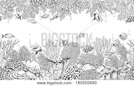 Hand drawn underwater natural elements. Seamless line horizontal pattern with reef corals actinia clams and swimming fishes. Monochrome sea bottom texture. Black and white illustration