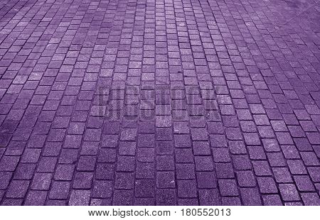 Stone block paving path in purple color, for background, Pattern