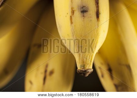 Macro detail of a bunch of bananas from Thailand