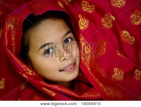 A young girl drape in opulent saree material in magenta and gold poster