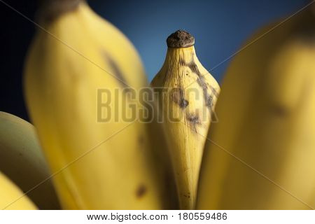 Closeup detail of a ripe Thai banana in a bunch with blue background