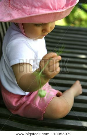 A beautiful baby girl playing with the nigella seedhead on a park bench Concept: Young and curious