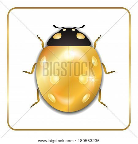 Ladybug gold insect small icon. Golden lady bug animal sign isolated on white background. 3d volume design. Cute jewelry ladybird design. Cartoon lady bird closeup beetle. Vector illustration