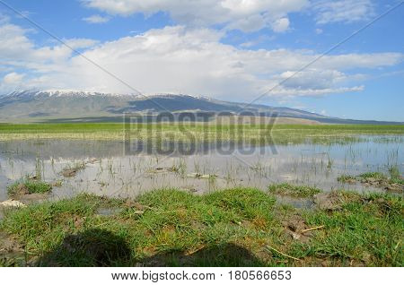 A Watery Area on Mount Agri of Turkey