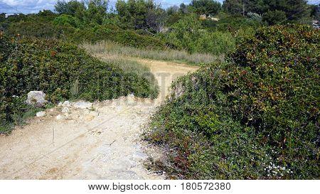 Marinha Trail
