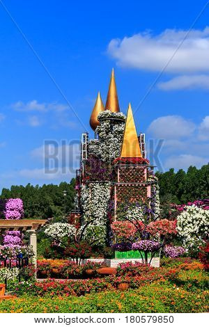 Dubai, UAE - January 5, 2017.  Dubai Miracle Garden - Model of the medieval castle of flowers. Dubai Miracle Garden is the largest natural flower garden in the world with a wide variety of different colors arranged in a heart shape, star, or other shapes