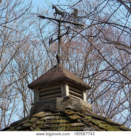 Weather vane in Mclean USA March 18 2017