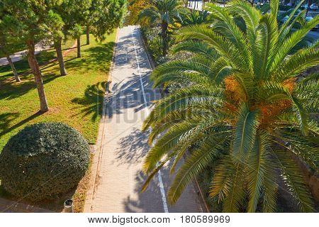 Valencia Turia park gardens aerial view at Spain