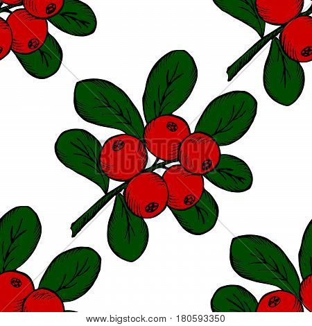 Сowberry with leaves and branches. Illustration doodle sketch hand-drawn bunch of ripened lingonberry. Seamless pattern. Vintage retro style. Ripe cranberry with leaves and branches.