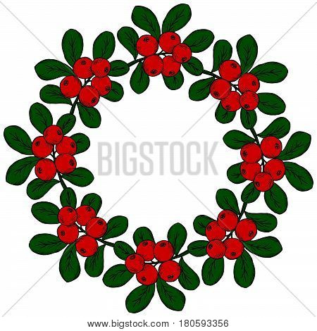 cranberry (cowberry) branches frame wreath isolated on white background with place for text.