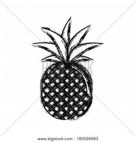 contour pineapple fruit icon stock, vector illustration design image