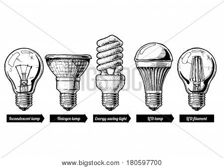 Vector hand drawn illustration of the light bulb evolution set. incandescent lightbulb tungsten halogen Energy-saving light LED lamp and light-emitting diode filament. Isolated on white background.