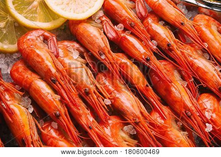 Set of shrimps closeup. Seafood. Shrimp on the table top