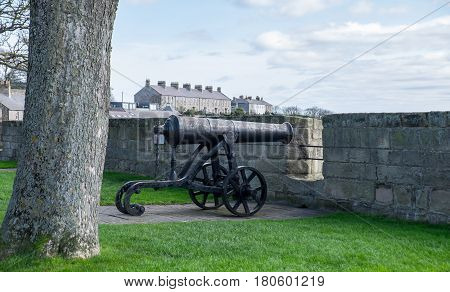 Cannon on the ramparts at Berwick upon Tween Northumberland UK