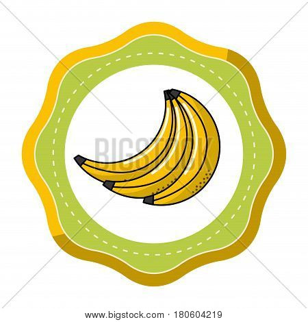 sticker babanas fruit icon stock, vector illustration design image