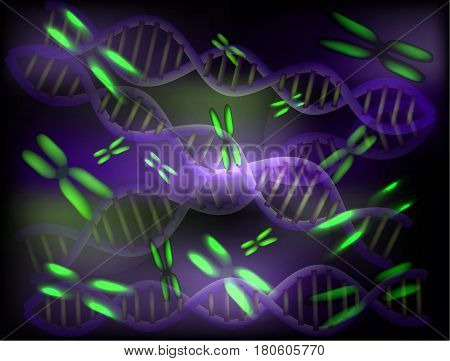 Background of chromosomes and DNA molecules. Vector illustration