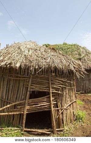 Maasai Hut In Village