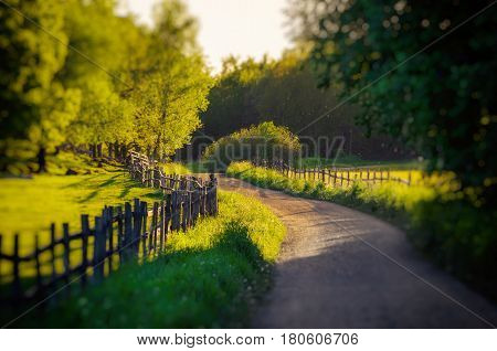 Rural Sweden summer landscape with road, green trees and wooden fence. Adventure scandinavian hipster eco concept