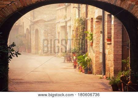 Narrow street of medieval San Quirico d'Orcia city with arch, green plants and cobblestone, travel foggy morning Italy background