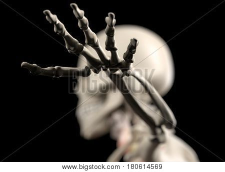 Anatomy body human. Hand. Skeletal system. 3d illustration.