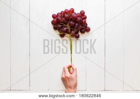 A bunch of grapes tied with a ribbon in a woman's hand on a white wooden background. View from above. Grapes like balloons. The concept of easy and healthy food.