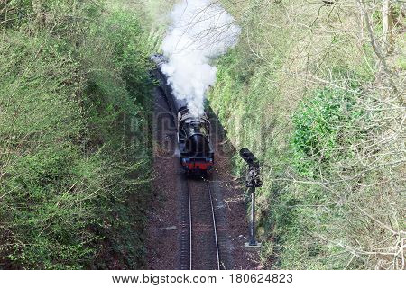 Steam train with heavy steam rising from the engine on a single rural line surrounded by mature trees in a cutting.
