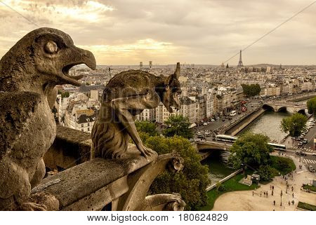 Chimera (gargoyle) on the Cathedral of Notre Dame de Paris overlooking Paris, France