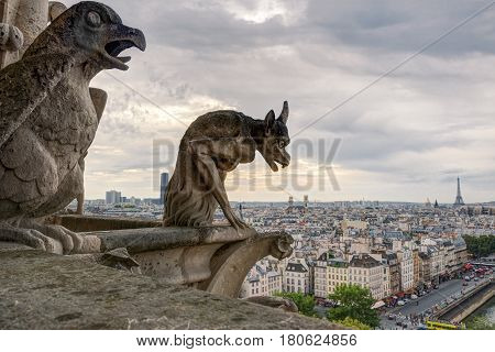 Chimera (gargoyles) of the Cathedral of Notre Dame de Paris overlooking the Eiffel Tower in Paris, France